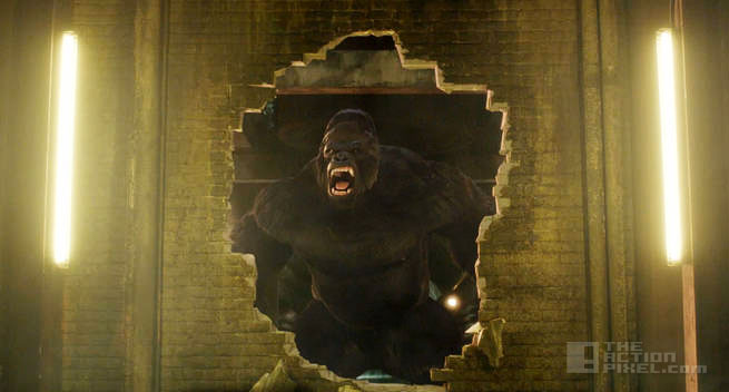 grodd lives. cw. the flash. the action pixel. @theactionpixel