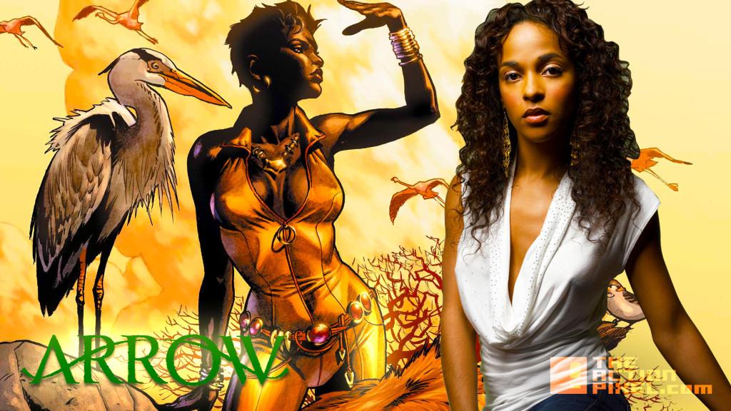 Megalyn Echikunwoke. arrow. vixen. dc comics., the cw network.  the action pixel. @theactionpixel