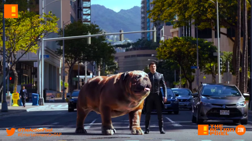 inhumans, lockjaw, black bolt, inhumans, Black Bolt, Medusa, Maximus,poster, marvel, imax, the inhumans, marvel's inhumans,the action pixel, entertainment on tap, trailer, lockjaw