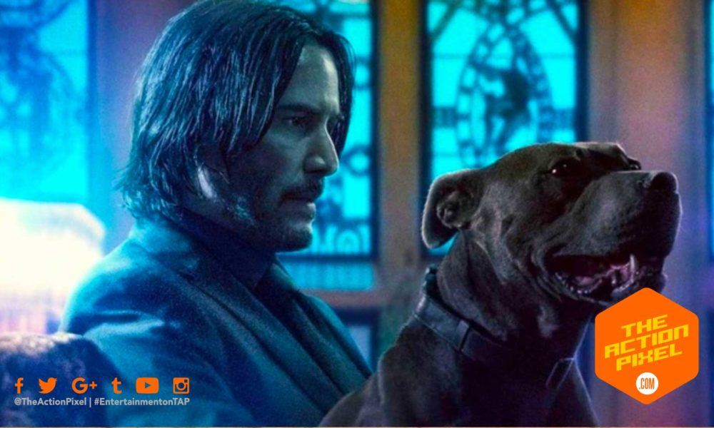 john wick 3, john wick 4, lionsgate movies,lionsgate, the action pixel, entertainment on tap, keanu reeves, parabellum,john wick chapter 3,