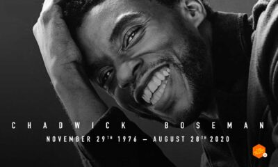 chadwick boseman, t'challa,marvel studios, marvel, black panther, rip chadwick boseman, rip chadwick bosman, the action pixel, entertainment on tap,