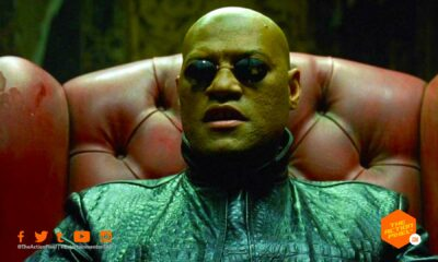 morpheus, matrix 4, laurence fishburne, the action pixel, entertainment on tap , trinity, neo, matrix, matrix 4, the matrix, carrie-anne moss, keanu reeves, the action pixel, entertainment on tap,